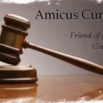 Tentang Amicus Curiae